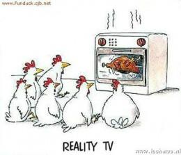 kippen-cartoon